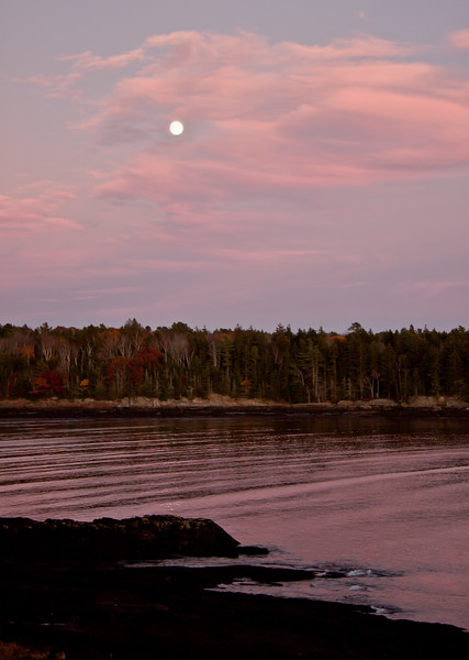 Full Beaver Moon November 04, 2009, Phippsburg, Maine, Totman Cove winter sky. Native Americans called the November full moon Full Beaver Moon because it signaled when traps should be set for beaver before the swamps froze. Beavers are also preparing for winter at this time.