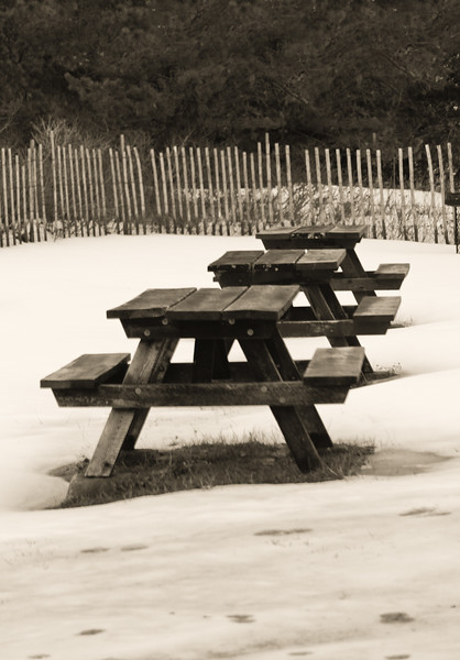 Picnic tables, Popham Beach State Park in winter, study in black and white
