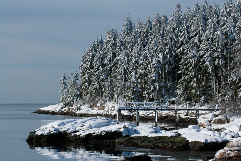 Maine, coast, winter Maine, coast, fog