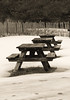 Picnic In The Snow, picnic tables at Popham Beach State Park in the winter.