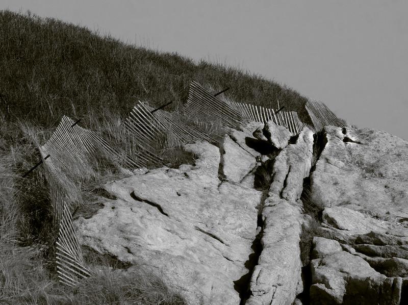 Grass, fence, ledge, Seawall Beach black and white, Phippsburg Maine