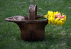 Dafodills And Tulips In A Basket