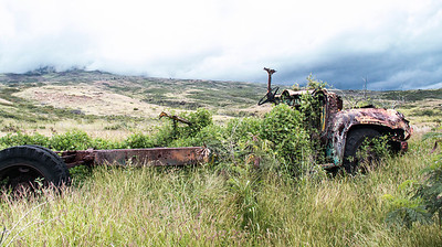 Broken down school bus, probably used as storage before it was overtaken by the weeds. This is pasture land. You can see that the clouds come right down the mountian. Southern Maui
