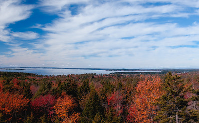 View from Robinson's Rock, also called the Bumper, looking west to the Portland skyline with gorgeous fall leaves in the foreground.