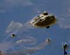 Bull frog resting in water, spring, Phippsburg, Maine amphibian