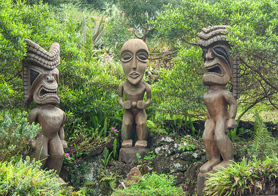 Tiki at the Kula Botanical Gardens, Kula Maui. A tiki is a wood or stone image of a Polynesian supernatural power, usually used to mark land boundries or sacred sites.
