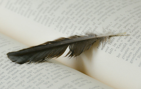feather and book