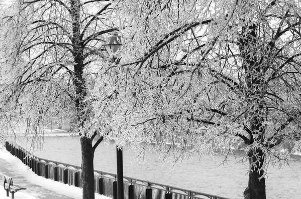 iced river walk black and white