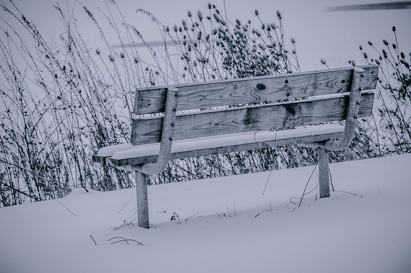 winter bench black and white