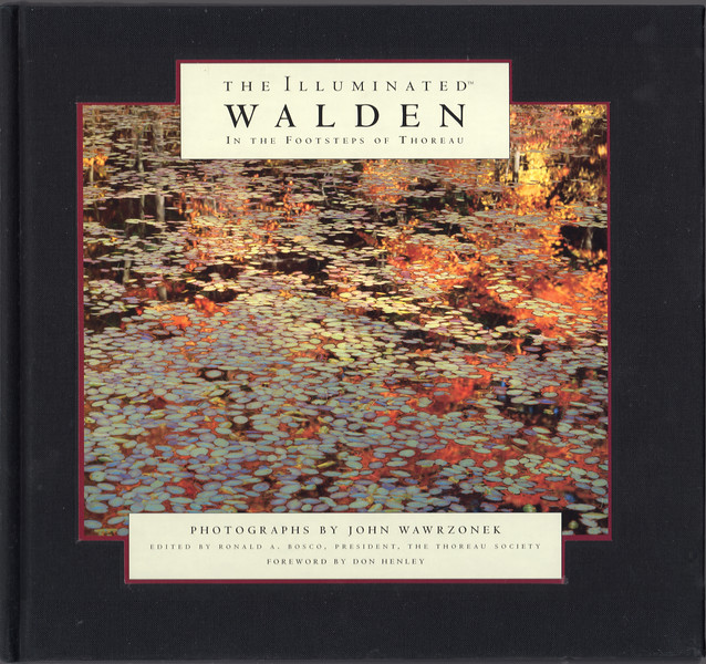 ILLUMINted WALDEN COVER