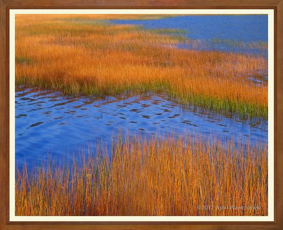 Blue Water & Brown Reeds II