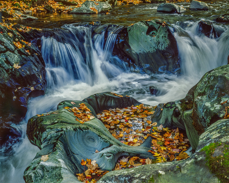 Rocky Stream & Fall Leaves II