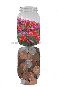 Jar of Flowers with Penny Reflection