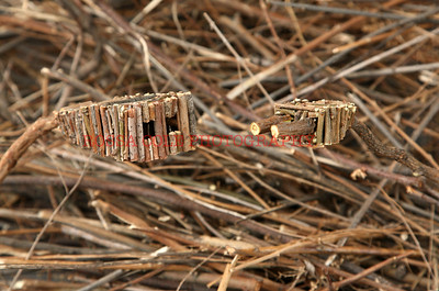 Stick Plugs,