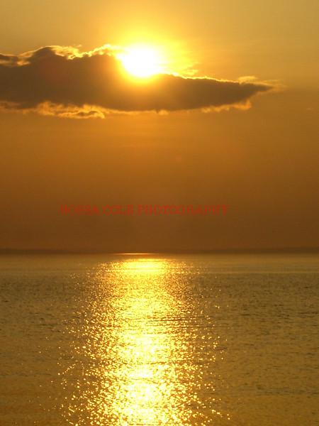 Springs sunset