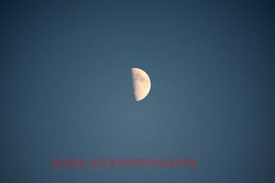0032-RC-IMG_0489