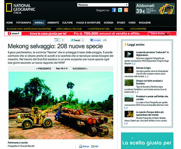 ILLEGAL LOGGING IN CAMBODIA, NATIONAL GEOGRAPHIC ITALIA 2011