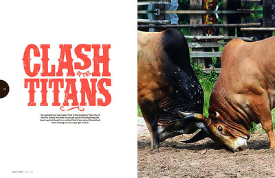BULL FIGHTING IN THAILAND, PUBLISHED IN TIGER INFLIGHT MAGAZINE 2011