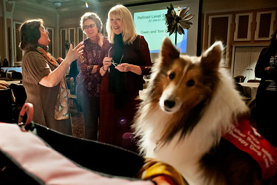 "Christine Lafferty (right) Amy Whitney (center) and Erika Capobianco (left)  watch as her Almstel's  dog Layla sits next to the purses during the ""Power of the Purse"" silent  auction at the Women in Philanthropy conference on Thursday, March 14th in Baker Ballroom. Also pictured is Emily Stern (far left). Photo by: Ross Brinkerhoff."
