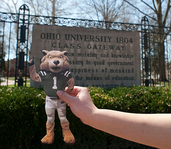 Flat Rufus on Campus 2014