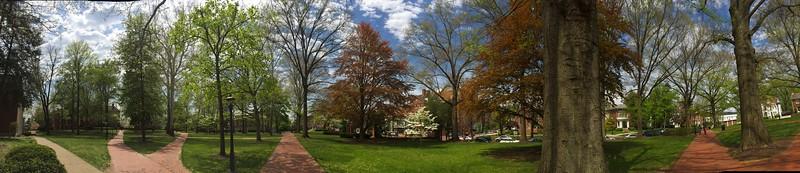 Spring Panoramic