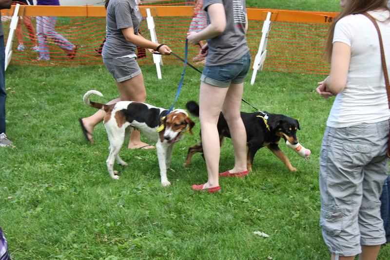 2011 OUAB Pet Event