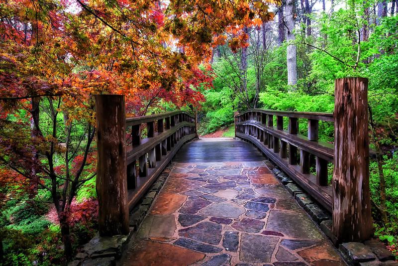 The Sunrise Bridge - Garvan Woodland Gardens - A Rainy Day in April 2014
