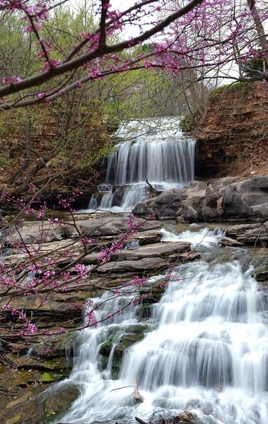 Redbuds and Waterfalls - Tanyard Creek Falls - Arkansas 2021