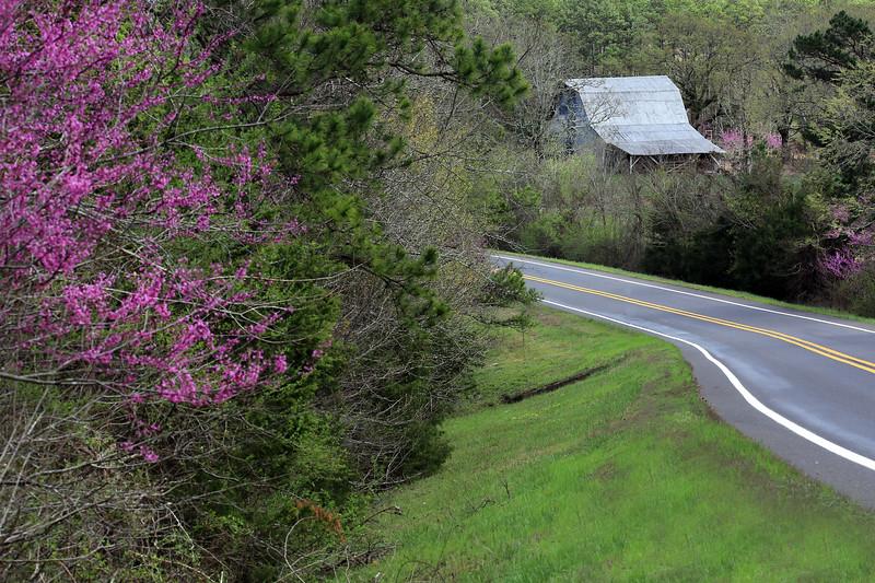 Springtime in the Ouachita's - Spring 2018