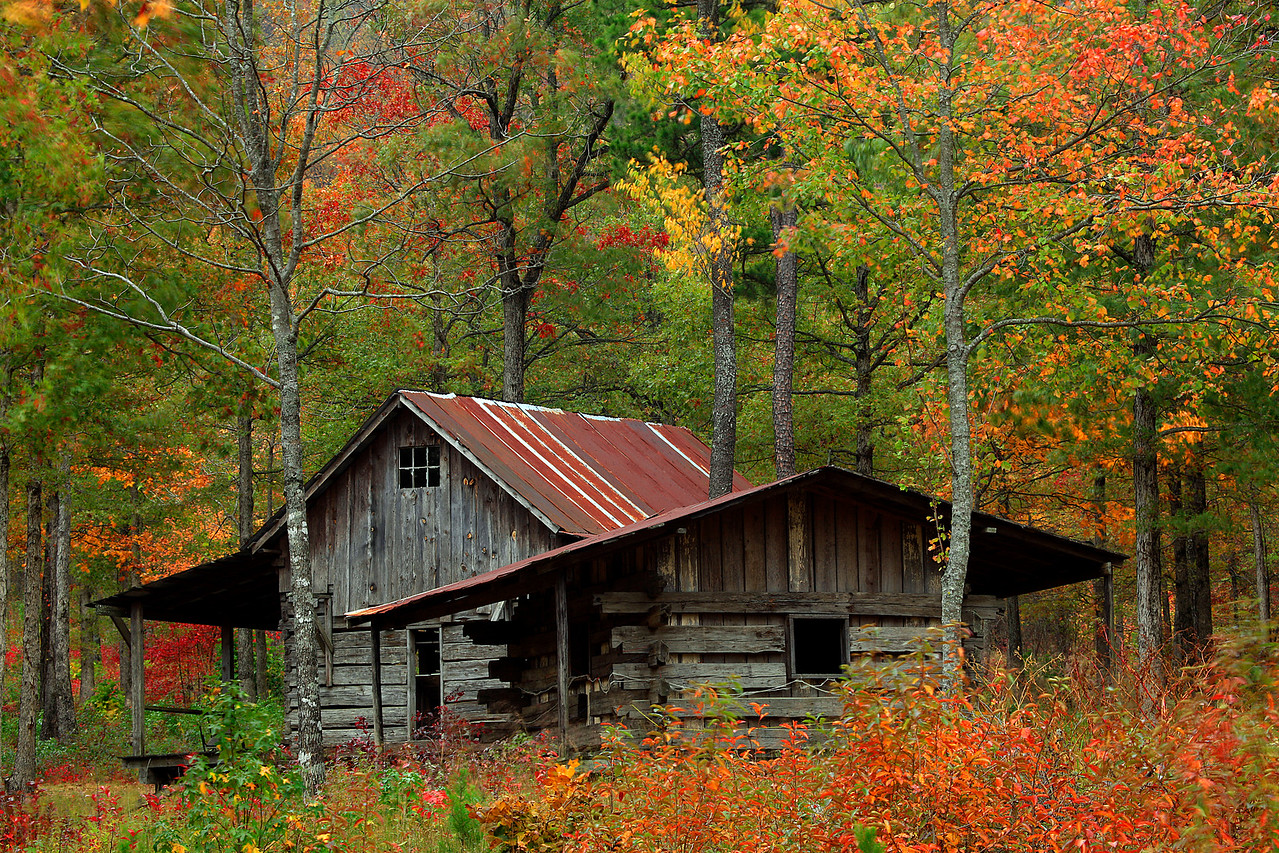How many falls have these cabins bared witness to, the people may no  longer live here but the colors always bring new life to a forgotten time.<br /> <br /> OUACHITA NATIONAL FOREST