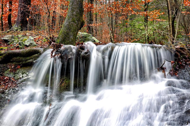 Tree Stump Falls - Ouachitas of Arkansas - Winter 2015