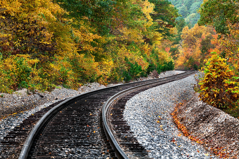 S- Curve Train Track - Ouachita National Forest