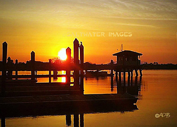 "Andrew Barkalow ~ ""City Marina: Golden Sunrise"" Color Photo"