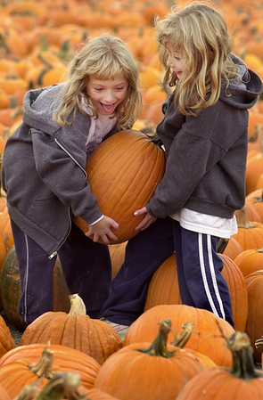 Pumpkin Twins by Aimee K. Wiles Banion