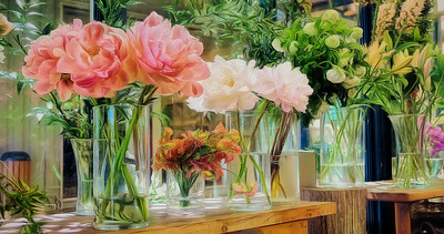 THE FLOWER SHOP II