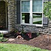 NEWLY PLANTED SHADE GARDEN IN FRONT