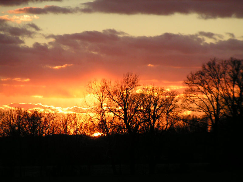 1.  Recent trip to Humboldt, the sun was setting over the farm land of friend, Maxine Raines.