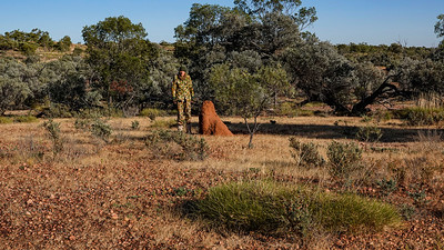 Shot taken to show the size of the termite mounds out there. At 6'2' of me they are a reasonable size. And yes, I not only look cold, I was cold.