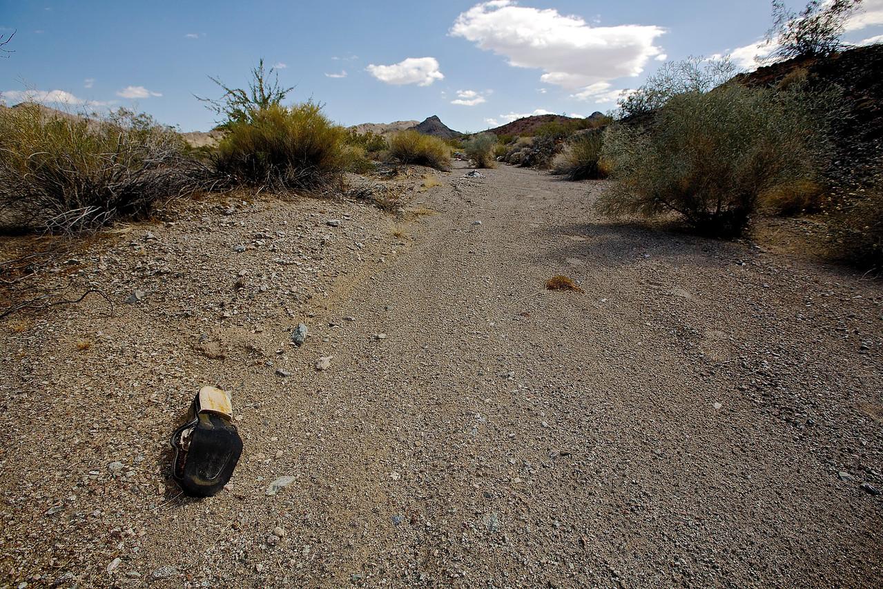 American Nomad. Mojave Wash #3