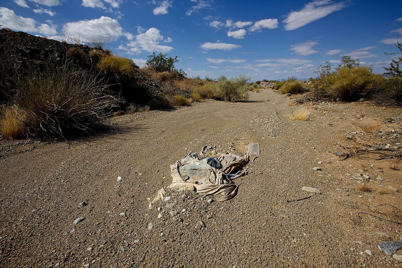 American Nomad.  Mojave Wash #2