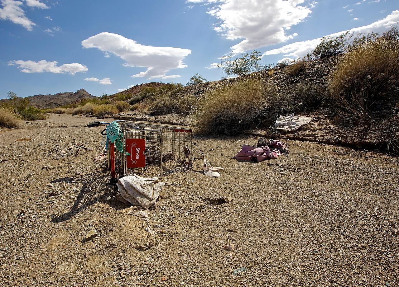 American Nomad. Mojave Wash #1