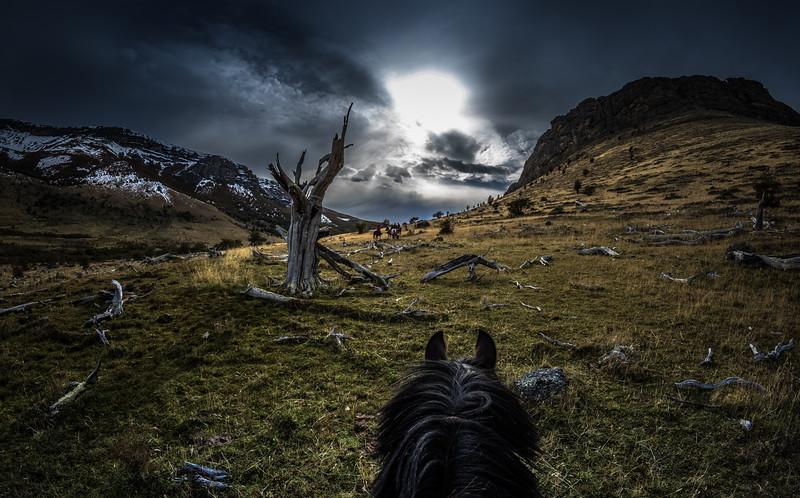 Parque Nacional Torres del Paine, Región de Magallanes - Chile