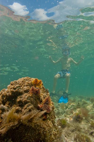 Snorkeling around the fort