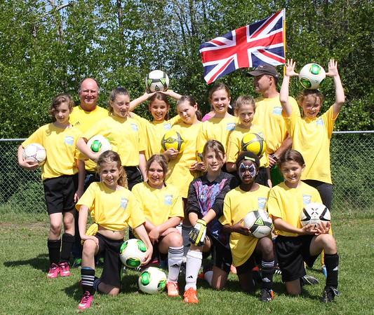 Mini World Cup 2014