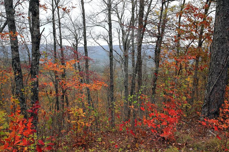 Queen Wilhelmena State Park - October 31, Fall 2017