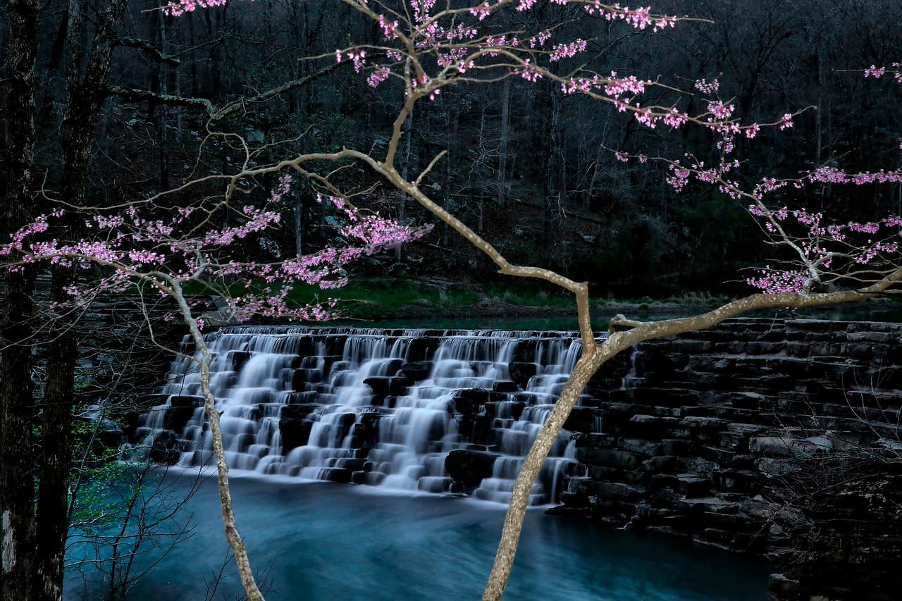 Splash of Color - Devil's Den State Park - West Fork, Arkansas - Spring 2016