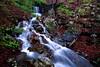 Hardy Falls - Mount Magazine Falls