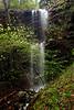 Dogwood Falls - Mount Magazine State Park