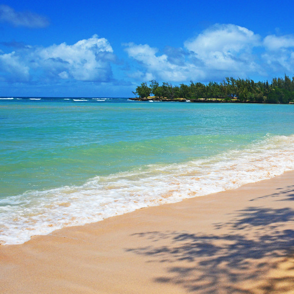 Oahu's North Shore.