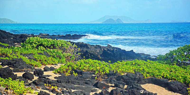Volcanic rock along Oahu's North Shore.